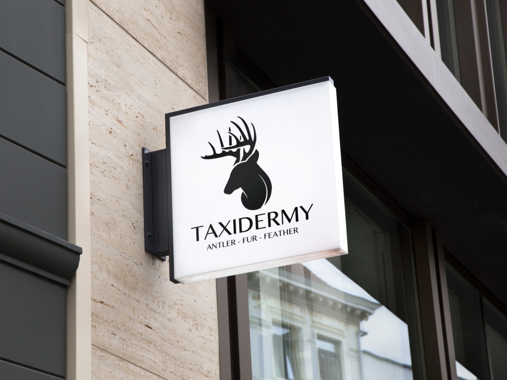 Taxidermy – Studio-D Designs